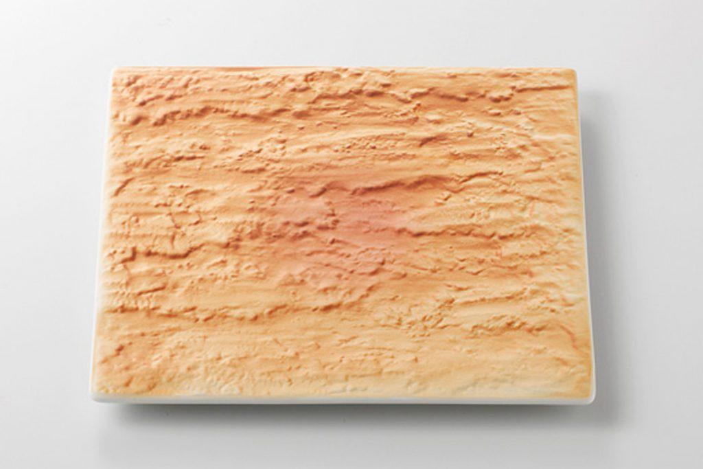 陸 石肌角20cm皿